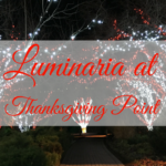 Luminaria at Thanksgiving Point