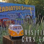 3 Reasons to Visit Cars Land (Radiator Springs) at California Adventure